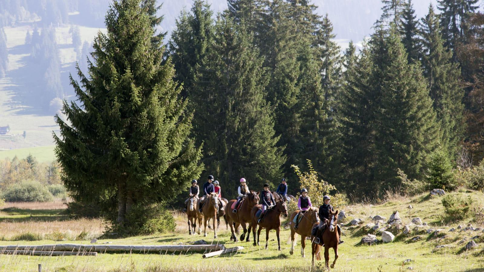Groupe de cavaliers en balade aux Rousses