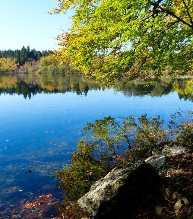 Le lac de Bonlieu à l'automne
