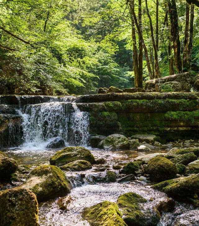Fraicheur aux cascades du Hérisson