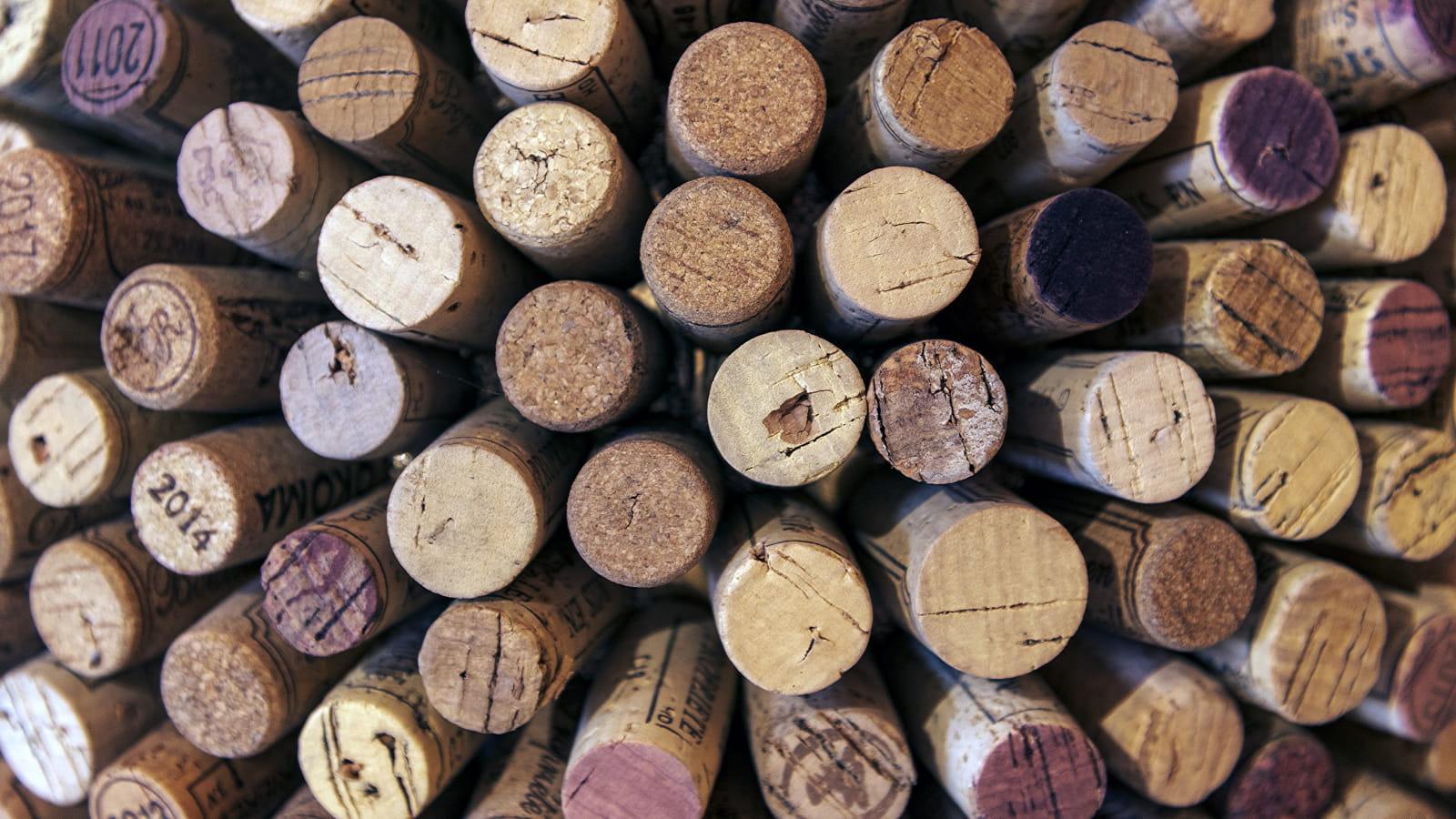 Jura et Bugey : des vins aux 3 couleurs