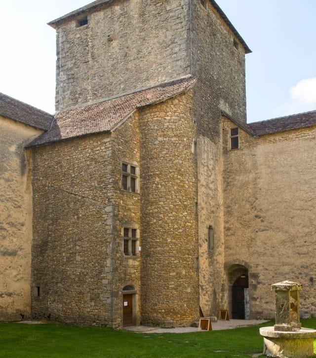 Vue depuis l'enceinte du château des Allymes