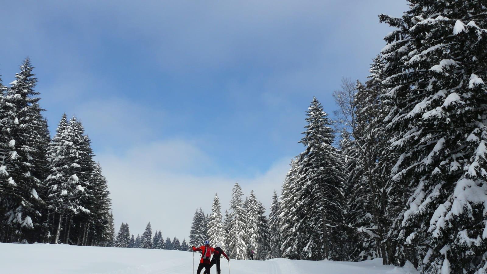 GTJ à Ski de fond
