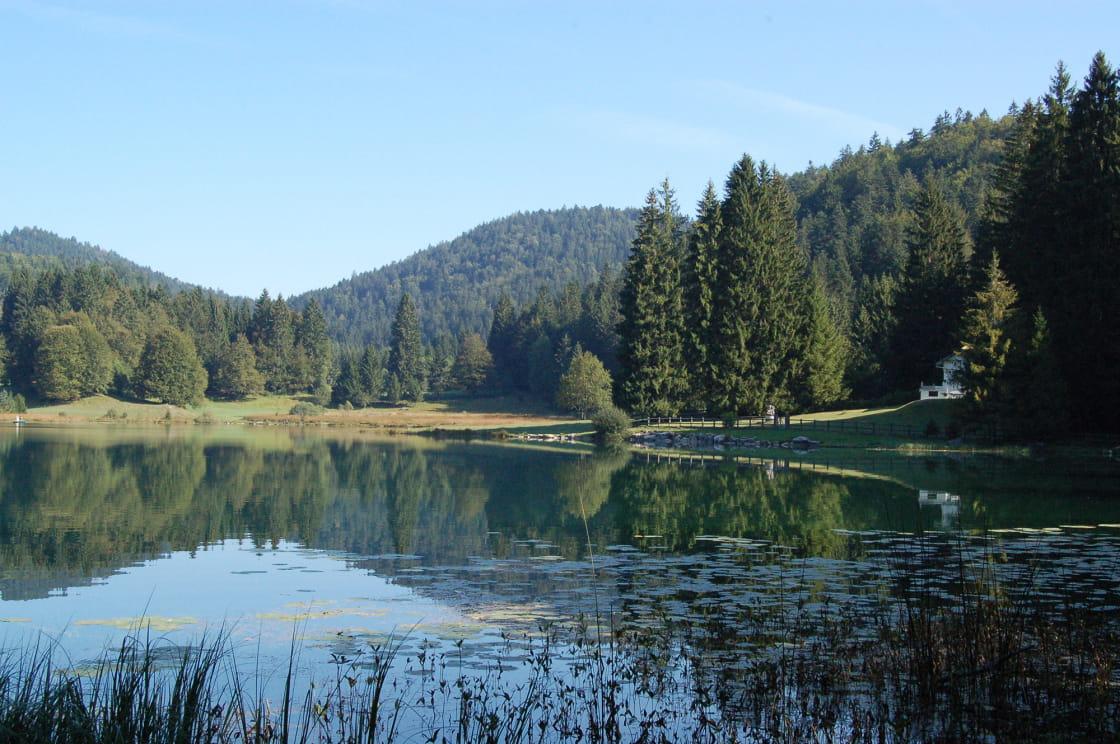 Nature sauvage au bord du lac de Genin