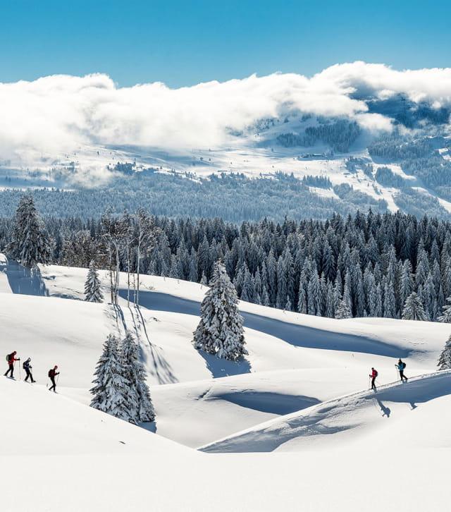 Le Parc Naturel Régional du Haut-Jura sous la neige