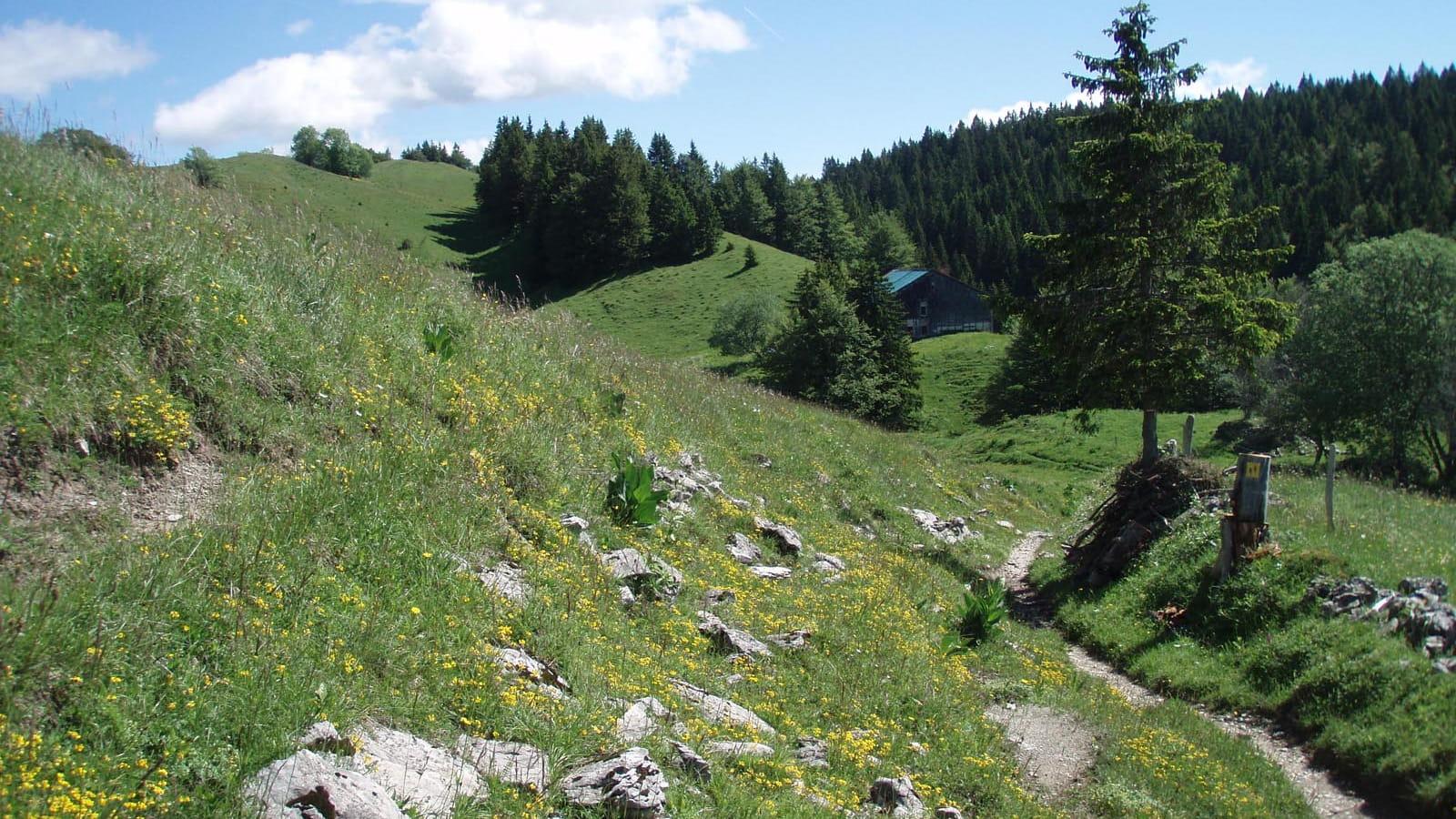 Paysage de hautes combes dans le massif du Jura
