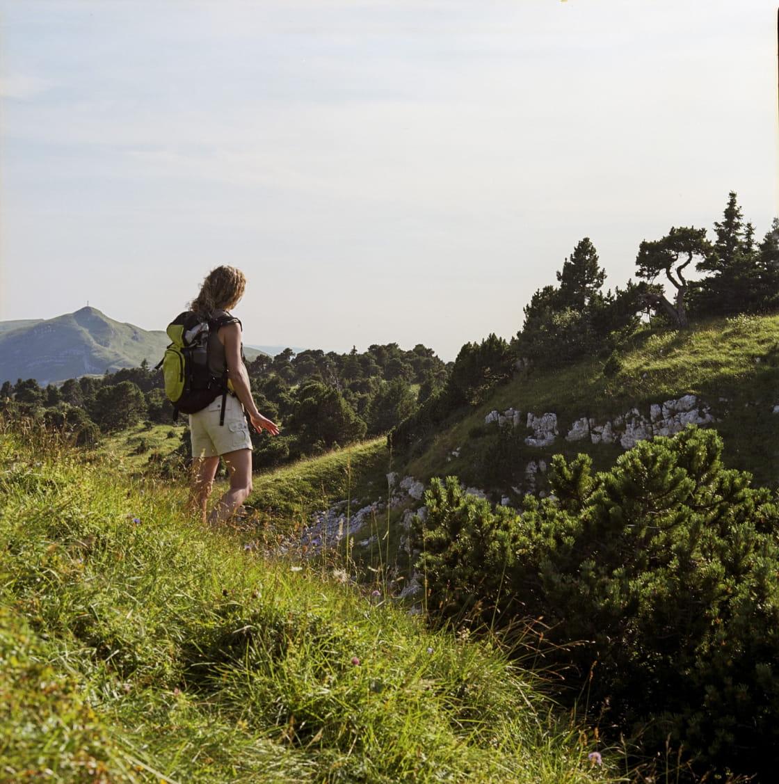 Rando entre cols et somamets dans le massif du Jura
