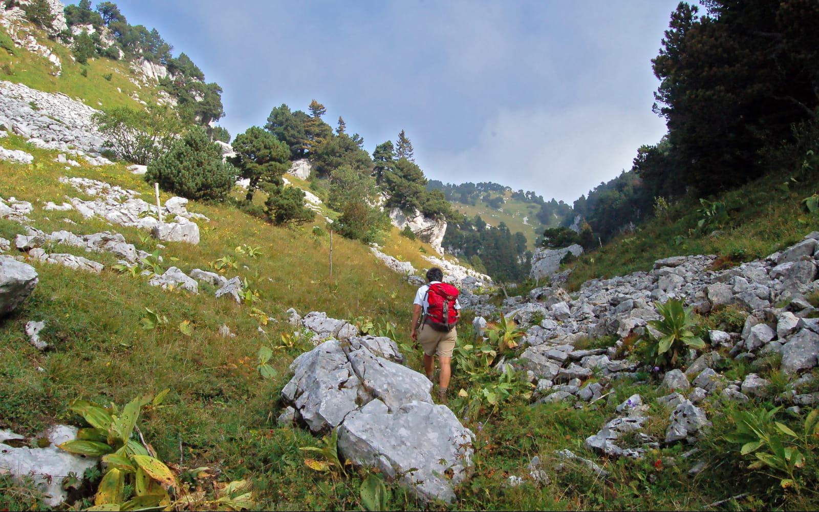 Rando sur les crètes du massif du Jura