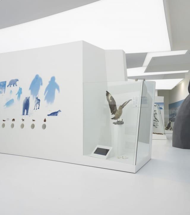 Salle d'expo de l'espace des mondes polaires