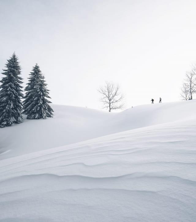Découverte des Hautes Combes à ski de fond