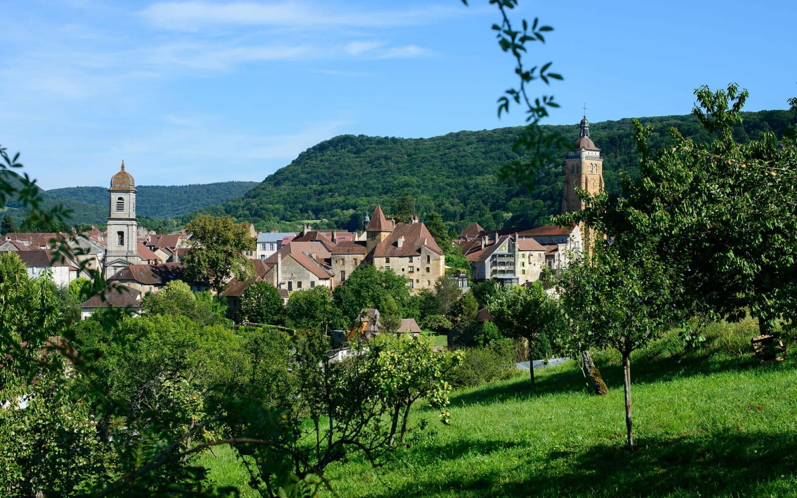 Arbois, une ville nature entourée de vignes et de forêt