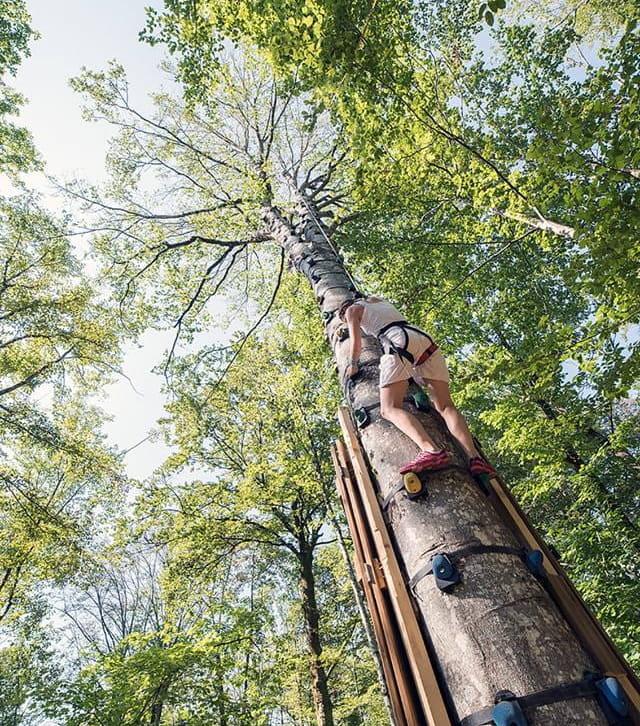 Parc aventure Funambulle