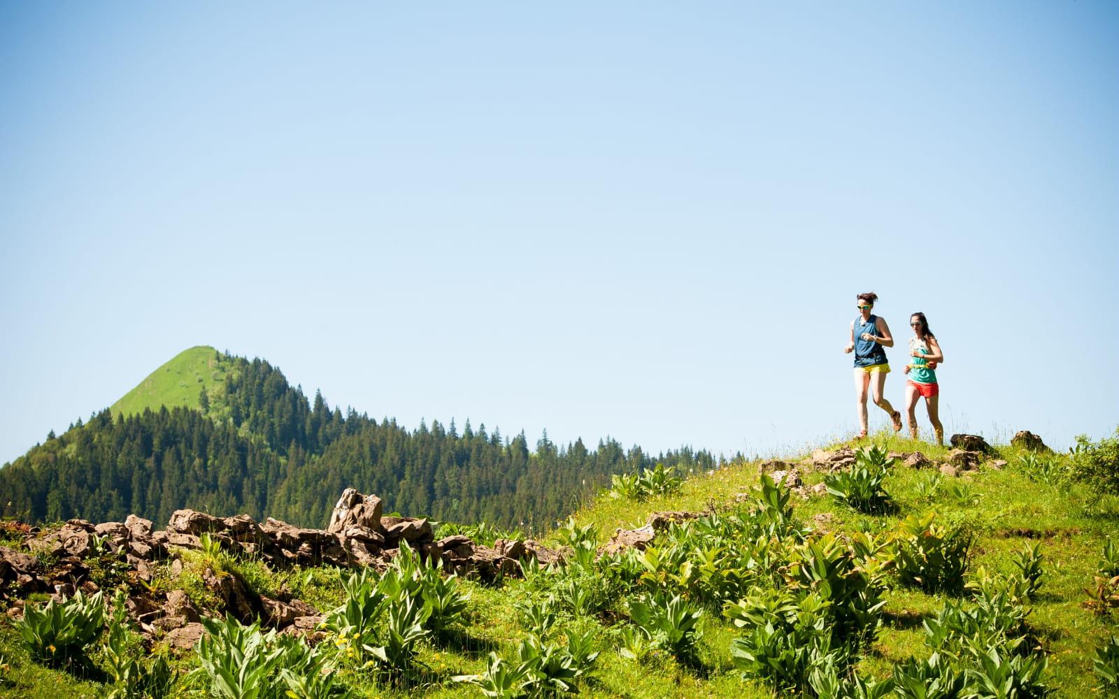 traileuses dans les montagnes du Jura