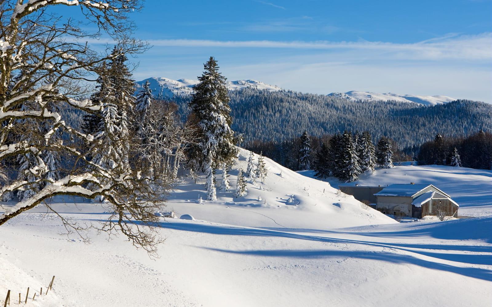 Hautes-Combes - Jura