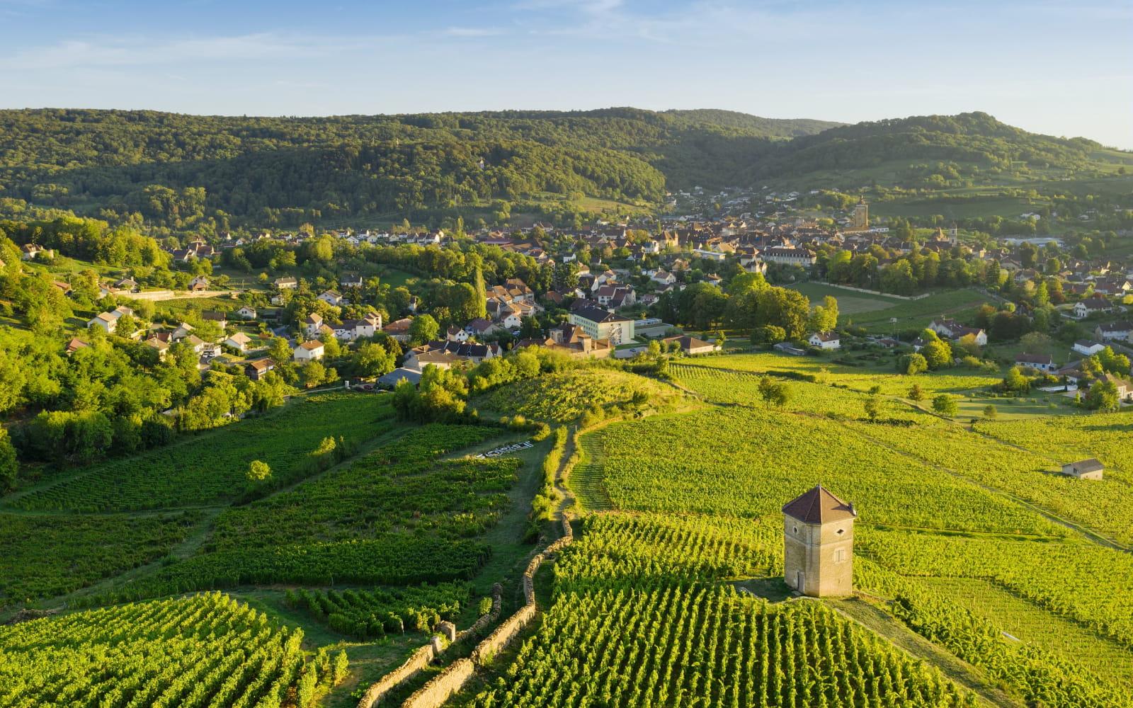 Village et vignes d'Arbois